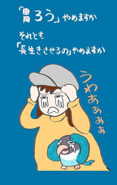 noboru18-11.jpg
