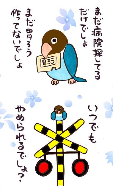 noboru18-8.jpg