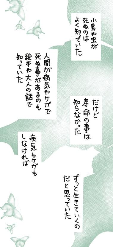 noboru21-6.jpg