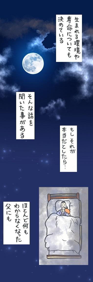 noburu19-2.jpg